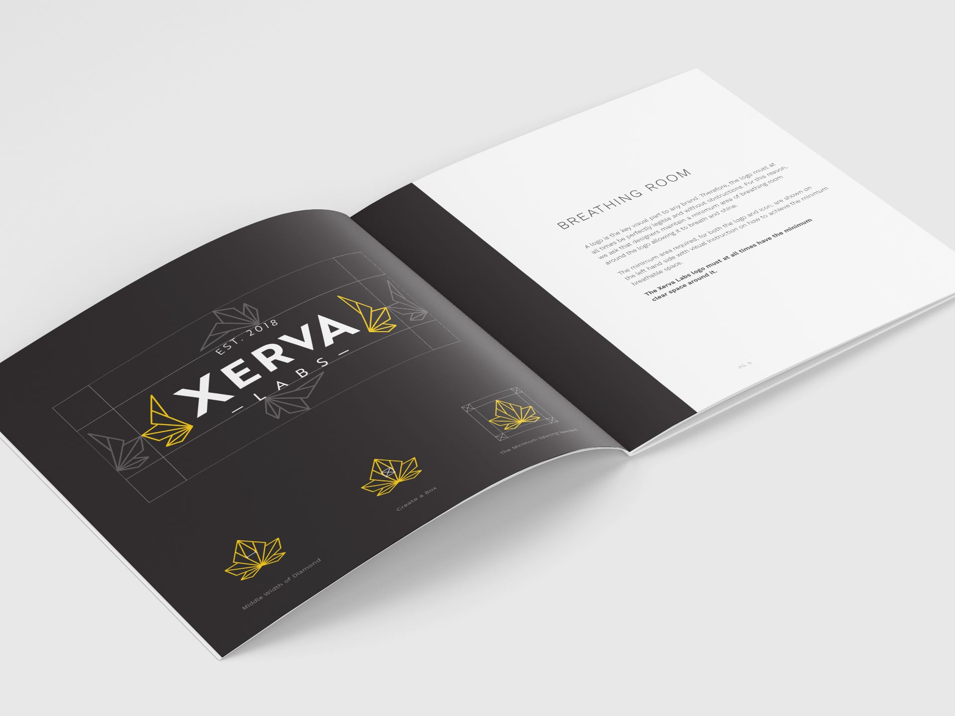 Y5 Creative Case Studies Emerging Markets Xerva Brand Booklet